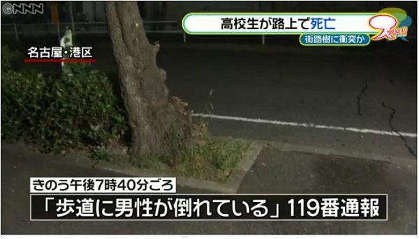 事故現場の街路樹